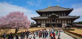 改めて見る「奈良の大仏さま」の神々しさと大きさに感動。