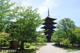 あの五重塔で有名な東寺を拝観。語り部が同行する歴史探訪の旅。