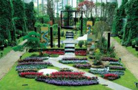 花を五感で感じる日本最大級の植物館、淡路夢舞台温室「奇跡の星の植物館」。 (雨天時)