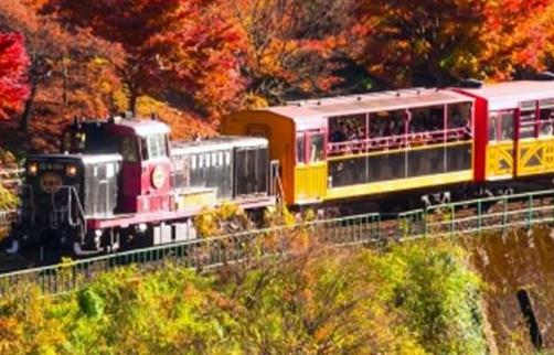 「自然を間近で感じ音に耳を傾ける】<br /> 電車では味わえない非日常!